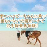石垣島の隠れ家ビーチ独り占めで乗馬!?予約なしでもOK~【船越荘】
