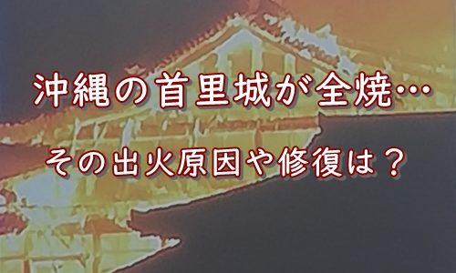 沖縄の大事なシンボル【首里城】が全焼…原因は?修復は?